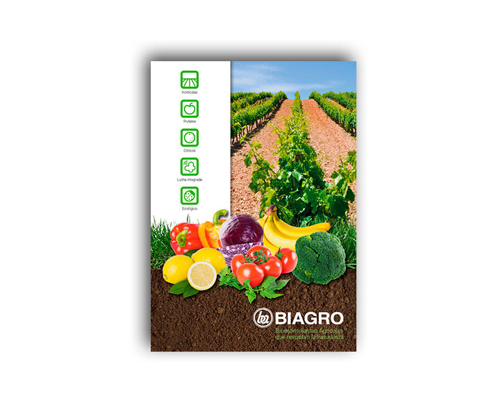 folleto-catalogo
